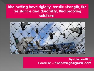 Our Bird or Pigeon netting stop them without harming them