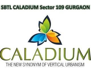 SBTL Caladium Dwarka Expressway