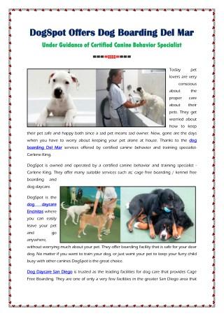 DogSpot Offers Dog Boarding Del Mar