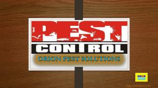 BEST PEST CONTROL COMPANY IN INDIA IS NOW IN YOUR CITY..