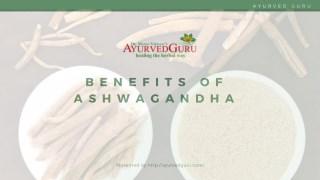 Benefits of Ashwagandha - Ayurved Guru