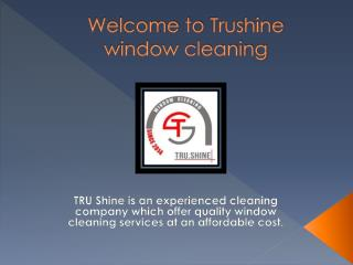 Trushinewindowcleaning.com Offers Quality Window Cleaning Services in Houston