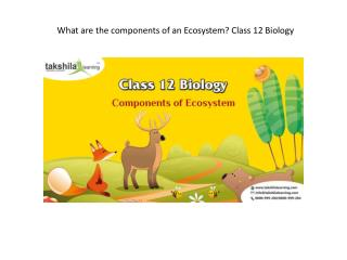 What are the components of an Ecosystem? Class 12 Biology