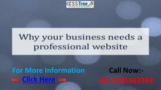 Why Business Needs A Professional Website