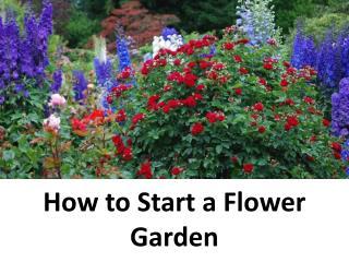 Expert Reviewed How to Start a Flower Garden