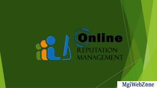 Online Reputation Management Services