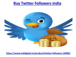 Hire one of the best buy twitter followers India