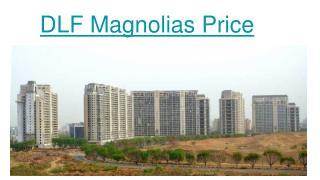 magnolia apartments gurgaon Price