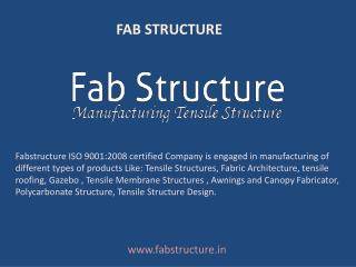 Fab Structure