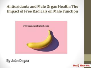Antioxidants and Male Organ Health: The Impact of Free Radicals on Male Function
