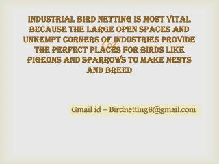 Bird netting have rigidity, tensile strength, fire resistance and durability, Bird proofing solutions