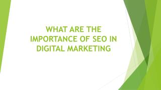 WHAT ARE THE  IMPORTANCE OF SEO IN DIGITAL MARKETING
