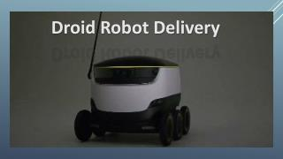 Droid Delivery