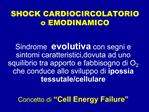 SHOCK CARDIOCIRCOLATORIO o EMODINAMICO