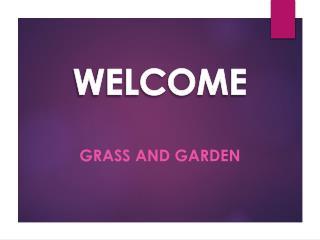 Best Garden Services in Mitcham