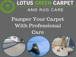Rug Cleaning Services in Washington