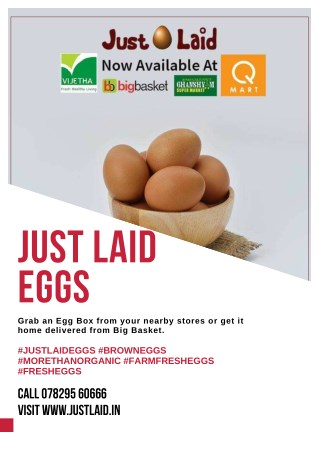 Wholesale egg suppliers in hyderabad.