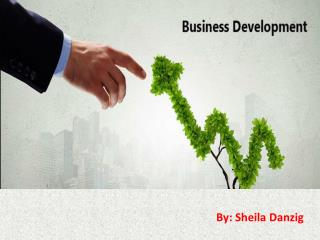 Tips for Business Development Process by Sheila Danzig