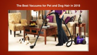 The Best Vacuums for Pet and Dog Hair in 2018