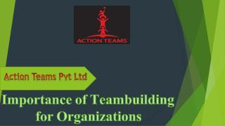Importance of Teambuilding for Organizations