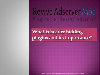 Header bidding plugins for revive ad server
