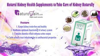 Natural Kidney Health Supplements to Take Care of Kidney Naturally