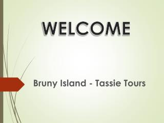 Planning for Bruny Island Day Tours