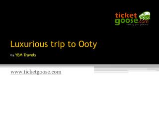 Luxurious trip to Ooty!