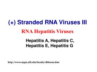 (+) Stranded RNA Viruses III