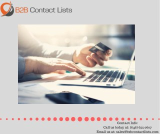 Business Email Lists| B2B Email Marketing Lists |USA Business Mailing List in USA