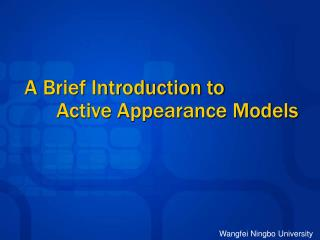 A Brief Introduction to  	Active Appearance Models