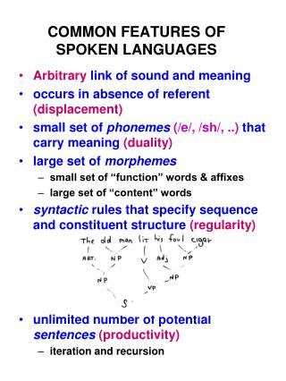 COMMON FEATURES OF SPOKEN LANGUAGES