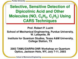 Selective, Sensitive Detection of Dipicolinic Acid and Other Molecules (NO, C 6 H 6 , C 2 H 2 ) Using CARS Techniques