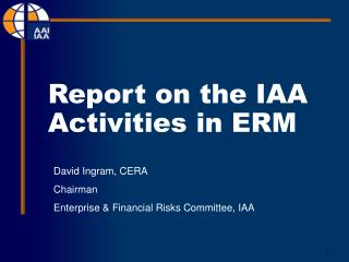 Report on the IAA Activities in ERM