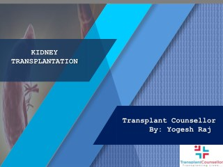 Kidney transplant in India | Transplant Counsellor