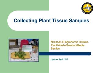 Collecting Plant Tissue Samples