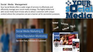 Your Social Media Services