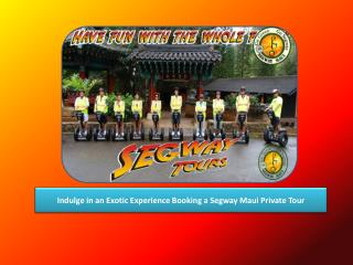 Indulge in an Exotic Experience Booking a Segway Maui Private Tour