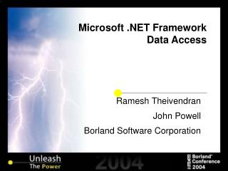 Microsoft .NET Framework   Data Access