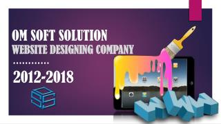 website designing company  in Delhi| om soft solution company in Delhi