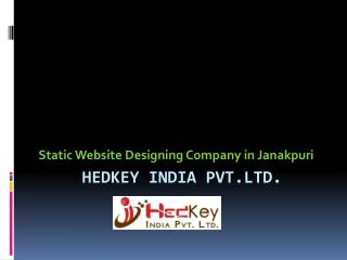 Static Website Designing Company in Janakpuri