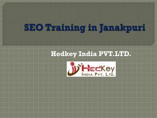 SEO Training in Janakpuri