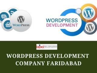 Best Wordpress Development Company in Faridabad