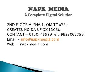 napx media Digital Marketing  - google SEO search engine optimization