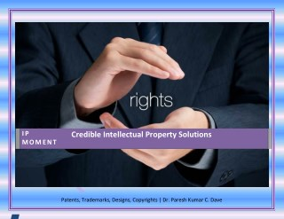 Intellectual Property Rights Services