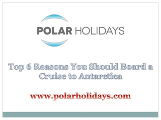 Top 6 Reasons You Should Board a Cruise to Antarctica