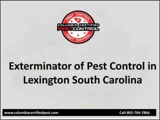 Best Exterminator of Pest Control in Lexington SC