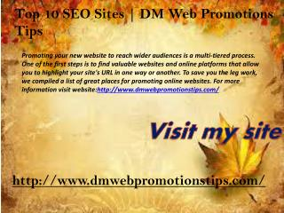 Top 10 SEO Sites | DM Web Promotions Tips