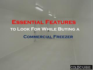 Essential Features to Look For While Buying a Commercial Freezer
