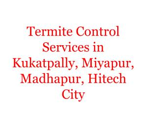 Termite Control Services in Kukatpally, Miyapur, Madhapur, Hitech City